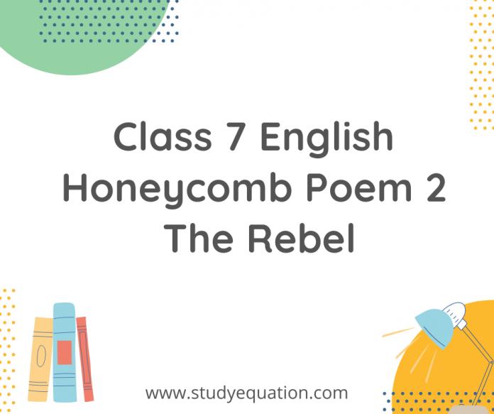 class 7 english honeycomb poem the rebel