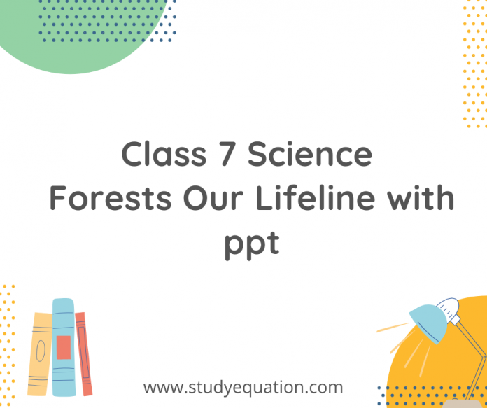 class 7 science forests our lifeline with ppt