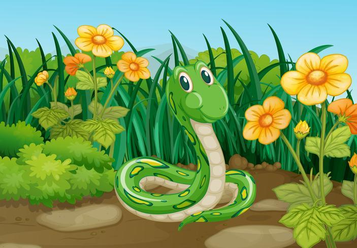NCERT Solutions For Class 7 English Honeycomb Unit 9 Poem Garden Snake