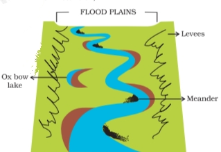 NCERT Solutions For Class 7 Social Science Geography Chapter 3 Our Changing Earth Features made by a river in a floodplain