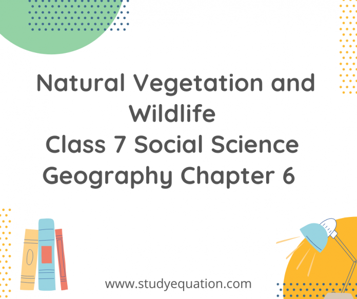 Natural vegetation and wildlife class 7 social science geography chapter 6