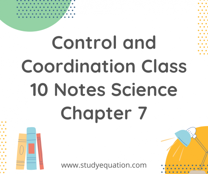 control and coordination class 10 notes science chapter 7