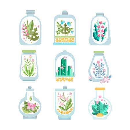 NCERT Solutions Class 7 Social Science Geography Water Terrariums