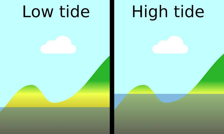 NCERT Solutions Class 7 Social Science Geography Water High Tide and Low Tide