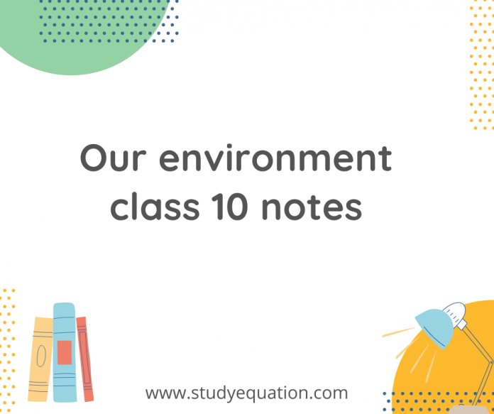 our environment class 10 notes