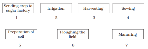 Crop Production And Management Class 8 Notes : Q. 9