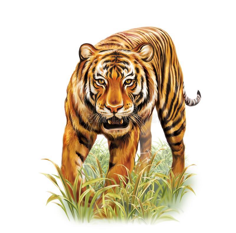 Aunt Jennifer's Tigers Summary Class 12 English
